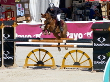 PONY D CAMPEON DE SALTO