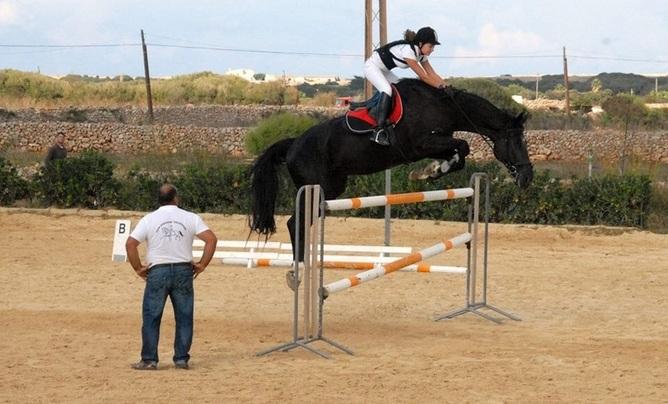 Vendo silla franc s salto de obstaculos en venta en islas baleares venta de caballos - Caballo silla frances ...