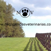Negligencias Veterinarias