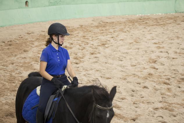 busco caballo en cesi n compartido barcelona en venta en