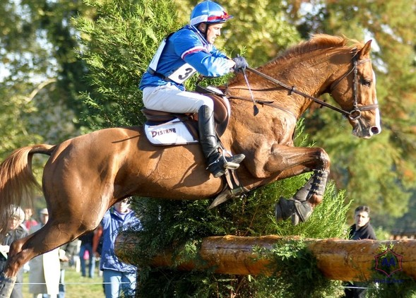 International Eventing Champion to cover your mare