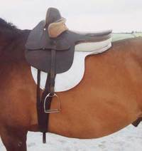 Monta a la amazona silla de montar venta de caballos - Silla de montar inglesa ...