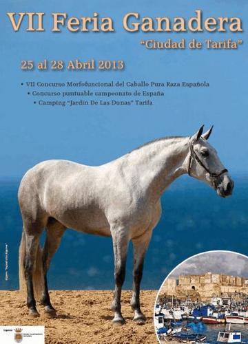 Venta de caballos eventos feria ganadera 39 ciudad de - Camping jardin de las dunas ...